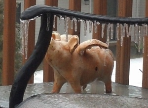 ice pig cropped