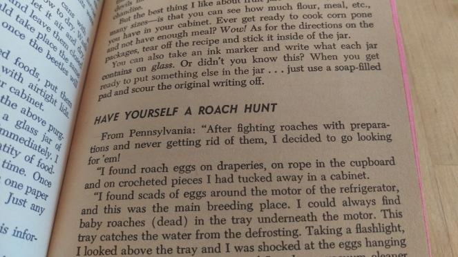 roach hunt.jpg
